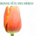 Bonne fête, des meres - С Днем Матери!